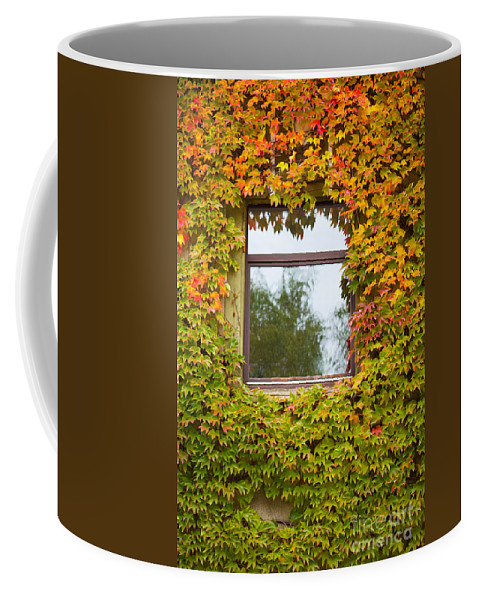 October Coffee Mug featuring the photograph Wall Overgrown With Fall Colored Vine And Ivy by Stephan Pietzko