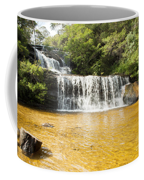 Australia Coffee Mug featuring the photograph Wentworth Falls Blue Mountains by Tim Hester