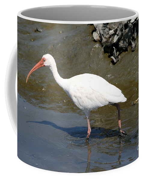 Wading Coffee Mug featuring the photograph White Ibis by Ken Keener