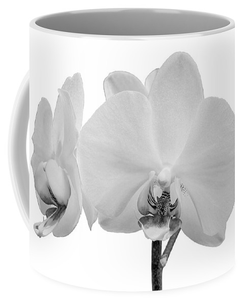 Anniversary Coffee Mug featuring the photograph White Orchid by Paul Fell