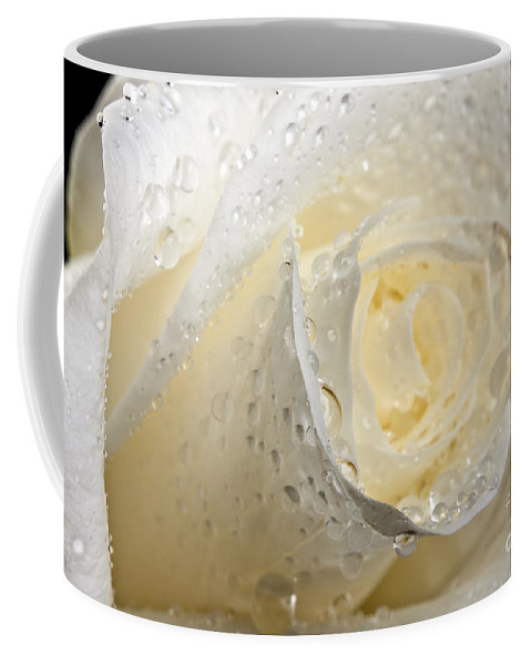 Beautiful Coffee Mug featuring the photograph White Roses by Gunnar Orn Arnason