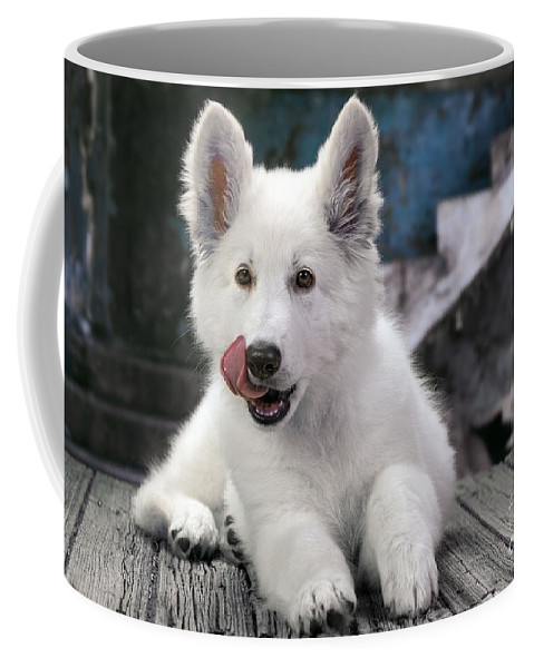 White Swiss Shepherd Dog Coffee Mug