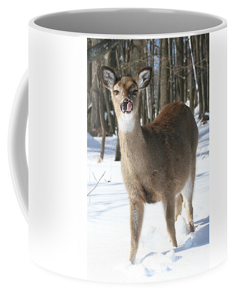 Doe Coffee Mug featuring the photograph White-tailed Deer by Ken Keener