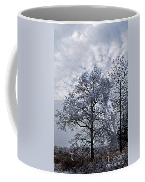 Nature Coffee Mug featuring the photograph Winter Lace by Skip Willits