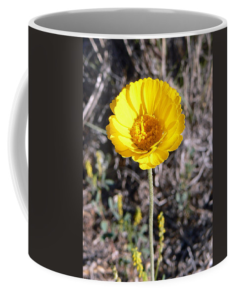 Flower Coffee Mug featuring the photograph Yellow Wildflower by Laurel Powell
