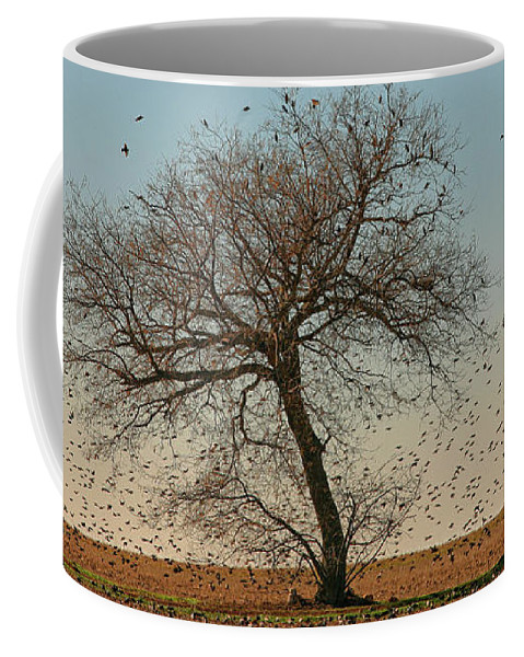 Ciudad Real Province Coffee Mug featuring the photograph A General View Of The National Park by David Santiago Garcia