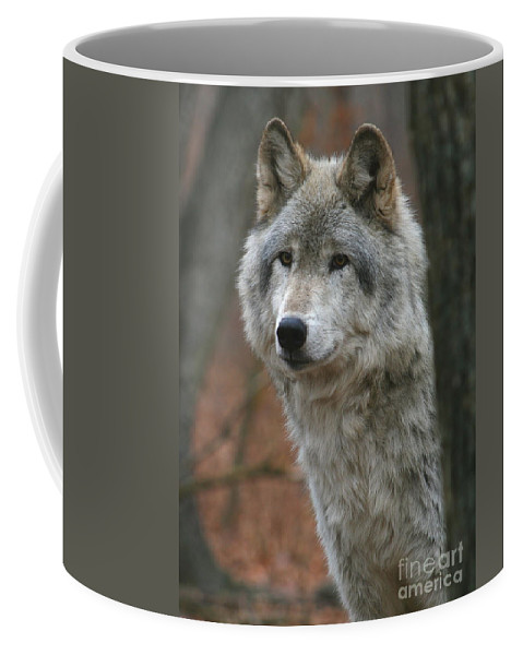 Timber Coffee Mug featuring the photograph Timber Wolf by Ken Keener