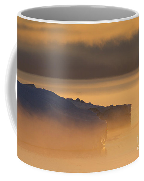 Iceberg Coffee Mug featuring the photograph 101130p119 by Arterra Picture Library