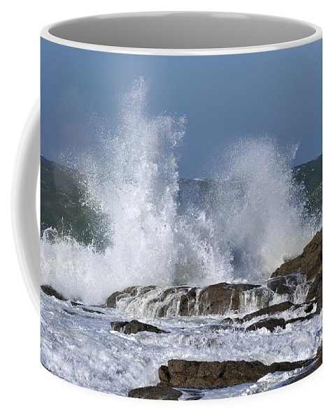 Water Coffee Mug featuring the photograph 110111p194 by Arterra Picture Library