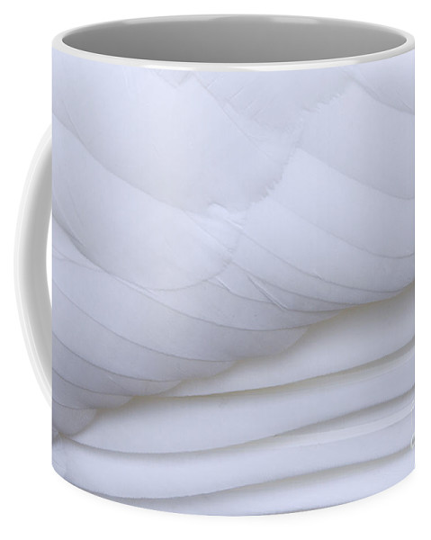 Mute Swan Coffee Mug featuring the photograph 110307p055 by Arterra Picture Library