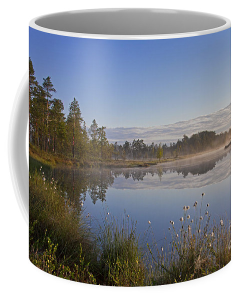 Moor Coffee Mug featuring the photograph 110307p101 by Arterra Picture Library