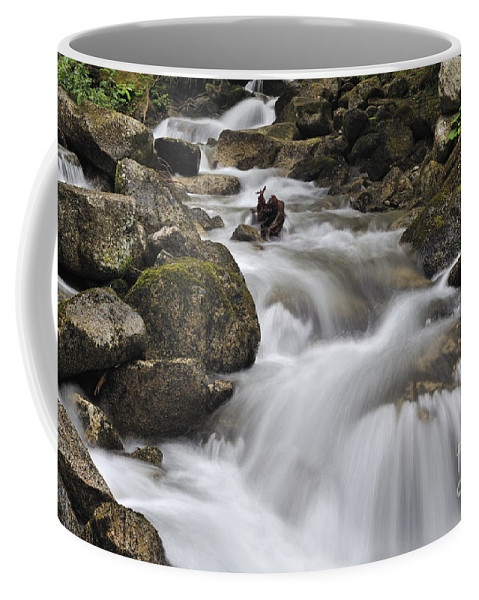 Mountain Brook Coffee Mug featuring the photograph 110414p104 by Arterra Picture Library