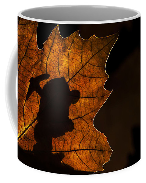 Dwarf Coffee Mug featuring the photograph 131114p318 by Arterra Picture Library