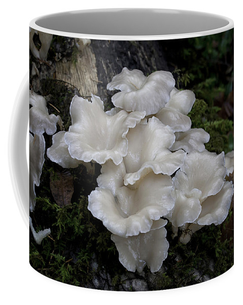 Angel Wings Coffee Mug featuring the photograph Angel Wings by Betty Depee