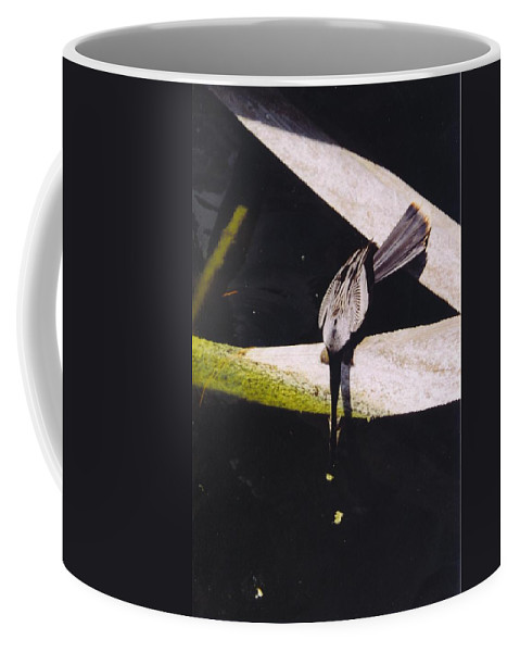 Lakes Park In Ft Coffee Mug featuring the photograph Anhinga Or Snake Bird by Robert Floyd