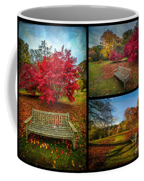 Acer Coffee Mug featuring the photograph Autumn In The Park by Adrian Evans