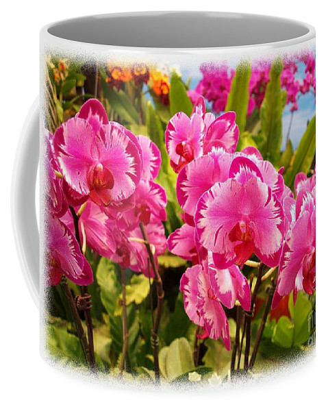 Phalaenopsis Coffee Mug featuring the photograph Beautiful Array Of Purple Butterfly Orchids by Yali Shi