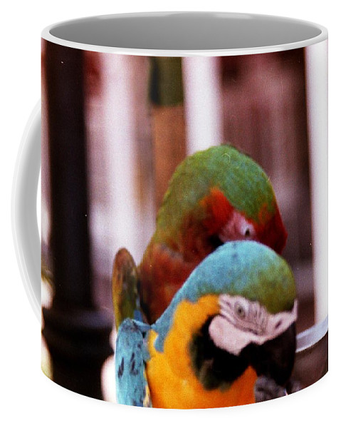 Parrots Coffee Mug featuring the photograph 2 Birds by Karl Rose