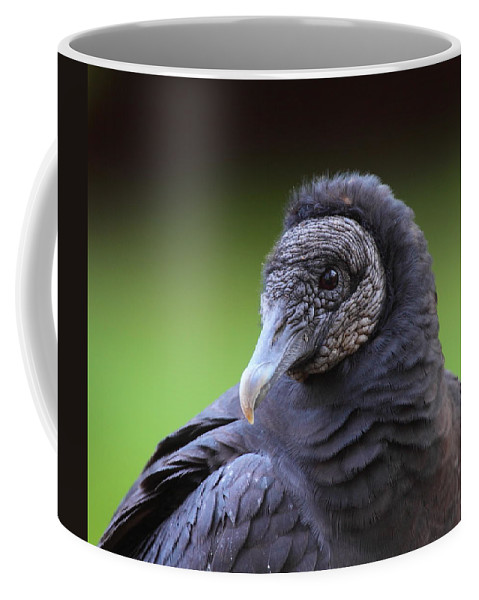 Vulture Coffee Mug featuring the photograph Black Vulture Portrait by Bruce J Robinson