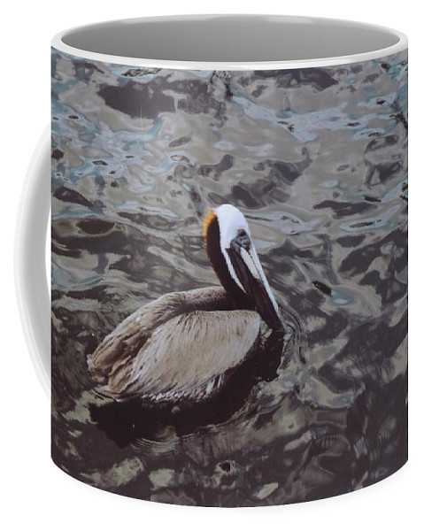 Matlacha Coffee Mug featuring the photograph Brown Pelican by Robert Floyd