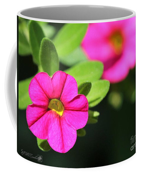 Mccombie Coffee Mug featuring the photograph Calibrachoa Named Colorburst Rose by J McCombie