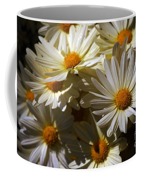 Pictures Of Flowers Coffee Mug featuring the photograph Contrasts by Skip Willits