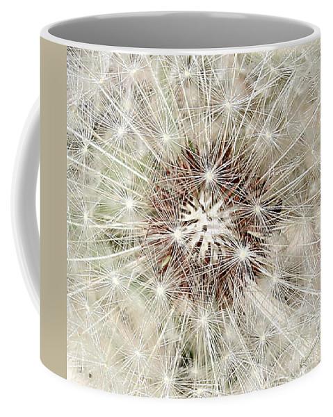 Dandelion Coffee Mug featuring the photograph Dandelion by Kume Bryant