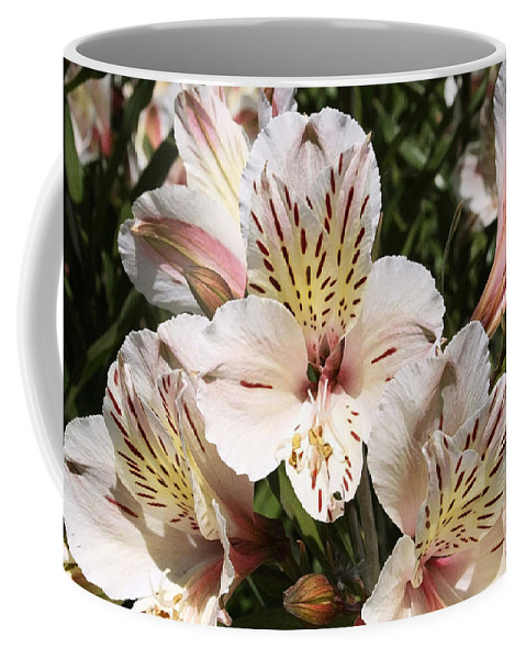 Desert Willow Coffee Mug featuring the painting Desert Willow by Ellen Henneke