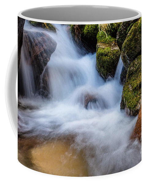 Waterfall Coffee Mug featuring the photograph Down The Mountain by Edgar Laureano