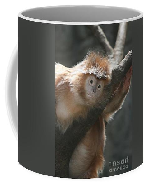 Langur Coffee Mug featuring the photograph Ebony Langur by Ken Keener