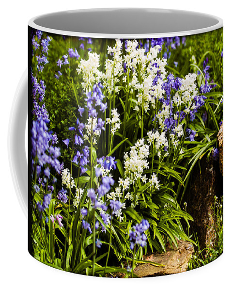 Bedding Coffee Mug featuring the photograph English Country Garden by Mark Llewellyn