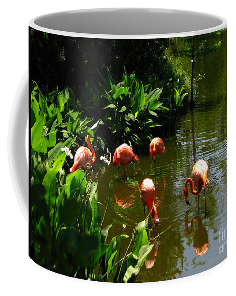 Flamingos Coffee Mug featuring the photograph Flamingos by Greg Patzer