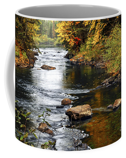 Autumn Coffee Mug featuring the photograph Forest River In The Fall by Elena Elisseeva