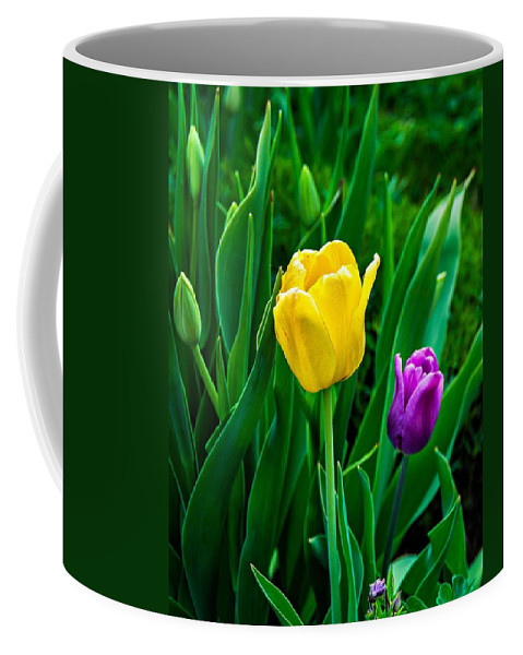 Tulip Coffee Mug featuring the photograph Garden Party by Steve Harrington