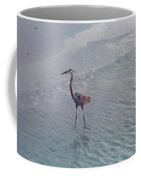 Sanibel Coffee Mug featuring the photograph Great Blue Heron by Robert Floyd