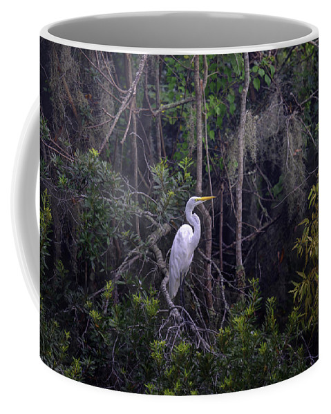 White Heron Coffee Mug featuring the photograph Lowcountry Marsh White Heron by Dale Powell