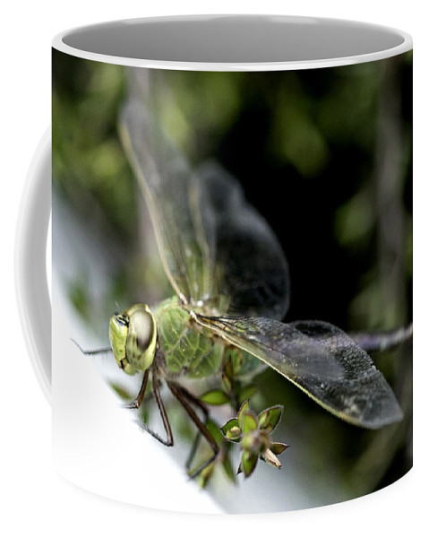 Dragonfly Coffee Mug featuring the photograph Green Dragonfly by Betty Depee