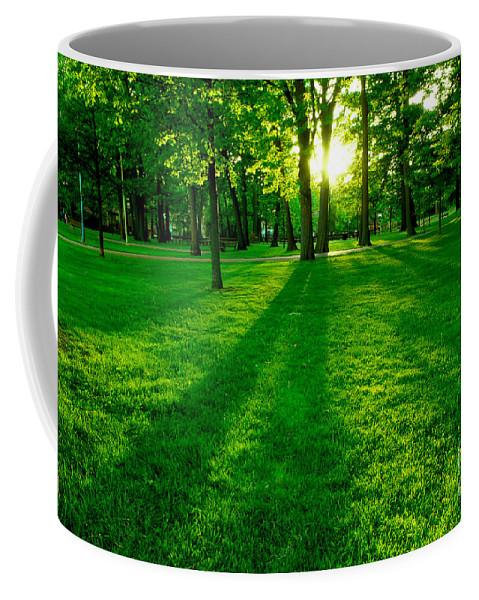 Park Coffee Mug featuring the photograph Green Park by Elena Elisseeva