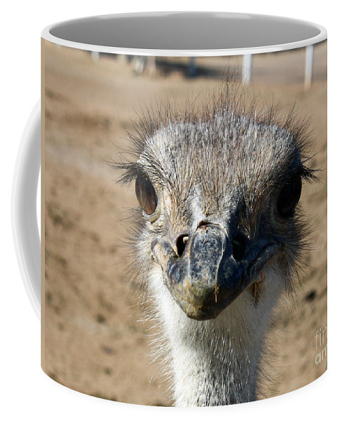 Ostrich Coffee Mug featuring the photograph How's My Hair by Kelly Holm