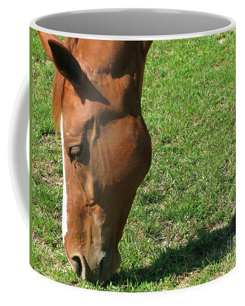 Horse Coffee Mug featuring the photograph In Green Pasture by Ann Horn