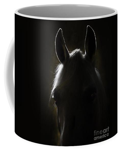 Horse Coffee Mug featuring the photograph In The Dark by Angel Ciesniarska