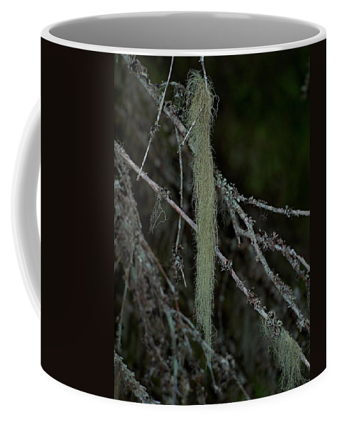 Finland Coffee Mug featuring the photograph Lichen by Jouko Lehto