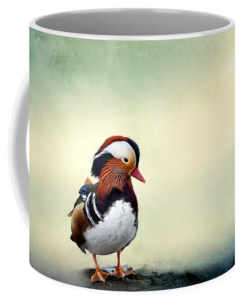 Mandarin Duck Coffee Mug featuring the photograph Mandarin Duck by Heike Hultsch