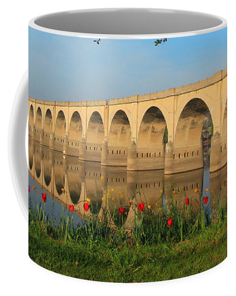 Reflections Coffee Mug featuring the photograph Mirror Image by Geoff Crego