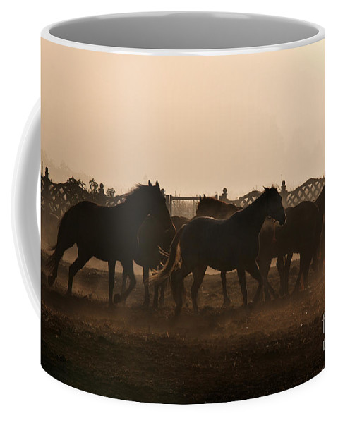 Horse Coffee Mug featuring the photograph Misty Morning by Angel Ciesniarska