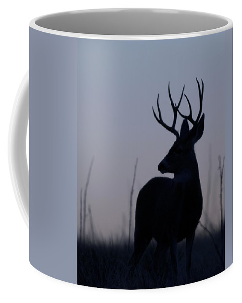 Mule Coffee Mug featuring the photograph Mule Deer Buck At Sunset by Gary Langley