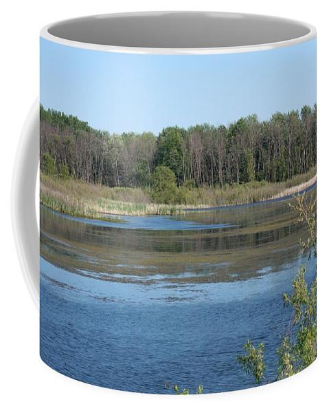 Shiawassee Wildlife Nature Park Coffee Mug featuring the photograph Nature by Linda Kerkau