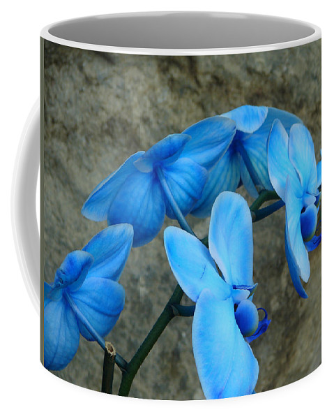 Flower Coffee Mug featuring the photograph Never by Katherine Sumpter