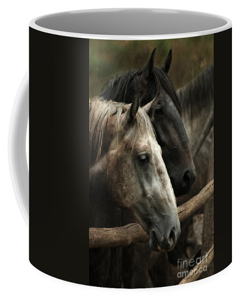 Horse Coffee Mug featuring the photograph Over The Fence by Angel Ciesniarska