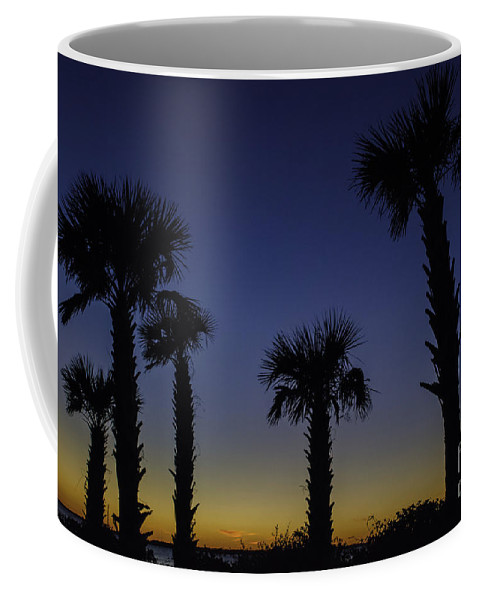 Palm Coffee Mug featuring the photograph Palmetto Sunset by Dale Powell